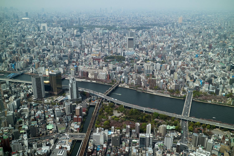 10年ぶりの東京。